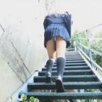 黒髪清純美少女・武井梨花ちゃんがセーラー服の下にエッロイ下着で誘ってきたwwwwww白Tバックマンスジで誘惑された俺はどうすればいいんだ・・・///