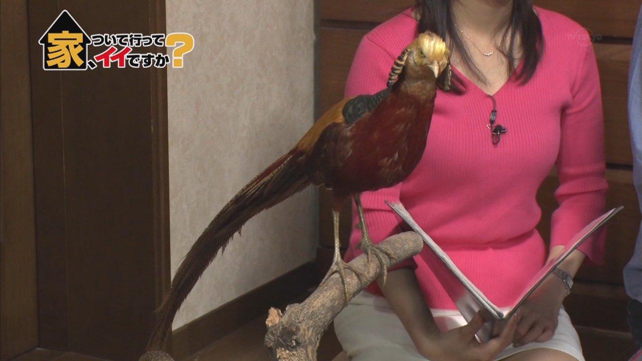 テレビエロシーン54