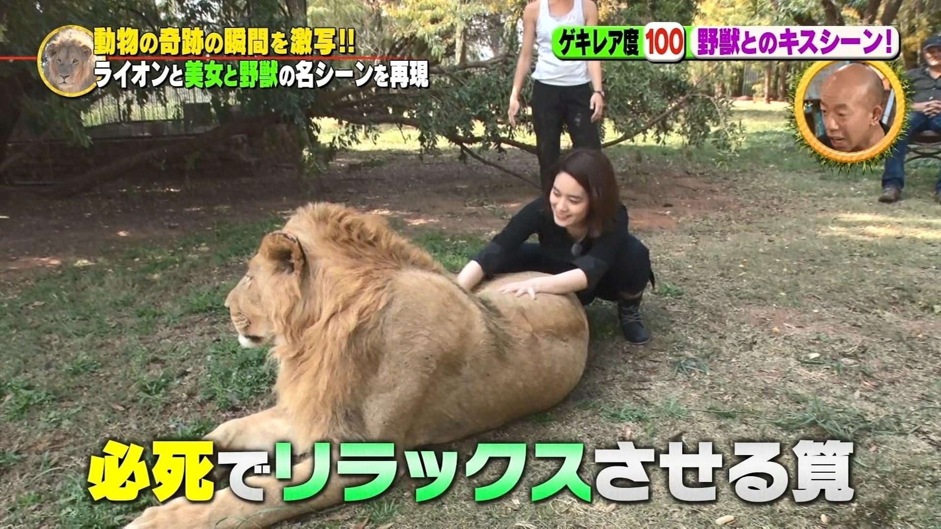 世界動物ゲキレアハンター・筧美和子27