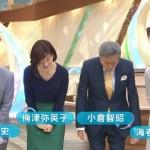 【画像】フジテレビ・とくダネ!の海老原優香さんの胸の膨らみがエッチ!w