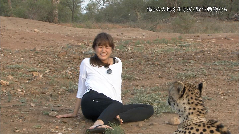 【ハプニング画像】【GIF有】チーターにマジでビビった川口春奈さんの下半身もち可愛すぎ問題 ω ω ω