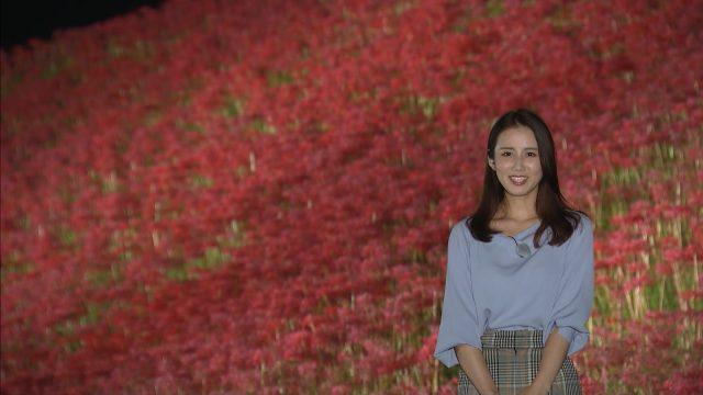 小川彩佳さんの9月24日報道ステーション画像-359