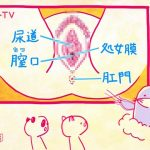 【画像・GIF】NHK Eテレ・ハートネットTVが物凄くストレートで真面目な性教育番組を放送😂