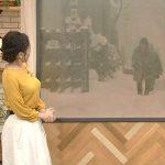 【画像】ニュースウォッチ9の桑子真帆さん、おっぱいがあまりにもつんつんでエチエチ😍