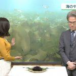 【画像】NHK女性アナウンサー・桑子真帆さんのおっぱいから感じる『美乳感』がエッチなニュースウォッチ9😍