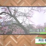 【画像】NHK「ニュースウォッチ9」の横乳エチエチお姉さん・桑子真帆さんのおっぱい😍