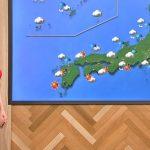 【画像】NHK・桑子真帆さんのこの大きなニットおっぱい…画面の左端に先っちょが映り込んでて草😍