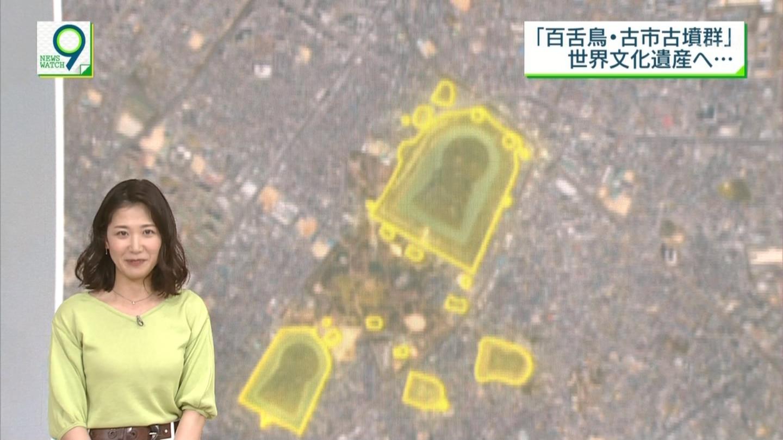 2019年5月14日NHK「ニュースウオッチ9」のテレビキャプチャー画像--007