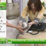 【画像】ショップチャンネルのおっぱい見せまくりエチエチお姉さん・近藤英恵さんの商品紹介😍