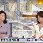 【画像】テレビ東京アナウンサー・秋元玲奈さんの姉の思いも背負ってるかは解らないエチエチおっぱい😍