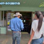 【画像】ハワイに恋して!のロコガール・サーシャさんのデニムピッタリお尻がエチキレイ?