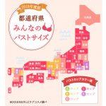 【話題】日本人女性、2012年→2018年でCカップオーバーが増えておっぱいが大きくなる?