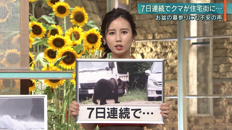 2019年8月12日に放送された「報道ステーション」に出演した森川夕貴さんの画像-061