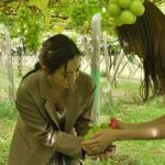【画像】BS-TBS「タビフク+VR」でE-girls・山口乃々華さんのマスカットに夢中なおっぱいの谷間がエッッッッッッ😍😍😍😍😍😍😍
