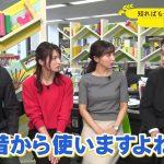 【画像】MBS「コトノハ図鑑」で女性アナウンサー・野嶋紗己子さんのおっぱいが( 三 )😍😍😍😍😍😍😍