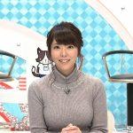 【画像・GIF】テレビ神奈川「猫のひたいほどワイド」の女子アナ・岡村帆奈美さん、おっぱいがスゴ∃😍😍😍😍😍😍😍