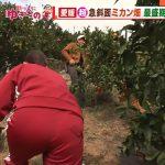 【画像】テレビ朝日「羽鳥慎一モーニングショー」で女性アナウンサー・山本雪乃さんのジャージお尻が画面を占拠🍑🍊🍑🍊🍑🍊🍑🍊