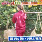 【画像】テレビ朝日「羽鳥慎一モーニングショー」で女性アナウンサー・山本雪乃さんのジャージお尻がエッッッッッ😍🍑😍🍑😍🍑😍🍑