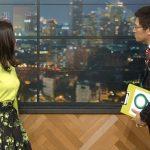 【画像】NHK「ニュースウオッチ9」で女子アナ・桑子真帆さんの横乳エチエチブラウスおっぱい😍😍😍😍😍