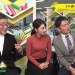 【画像】MBS女性アナウンサー・野嶋紗己子さんのニットおっぱいのキレイな膨らみがエッチな「コトノハ図鑑」😍😍😍😍😍