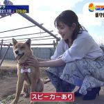 【画像・GIF】テレビ東京「WBS・トレンドたまご」に出演した女子アナ・田中瞳さんに犬もメロメロ😍🐶 😍🐶 😍🐶 😍🐶 😍🐶 😍🐶