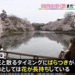 【画像】TBSのお天気キャスター・奈良岡希実子さんのニットおっぱいの膨らみがエロ∃😍😍😍😍😍😍