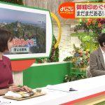 【画像・GIF】テレビ東京アナウンサー・田中瞳さんのニットおっぱい😍😍😍😍😍😍😍😍😍😍